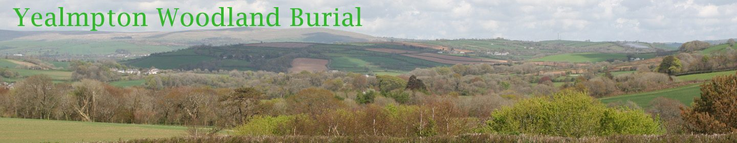 Yealmpton Woodland Burial Association - a company limited by guarantee No. 8720211